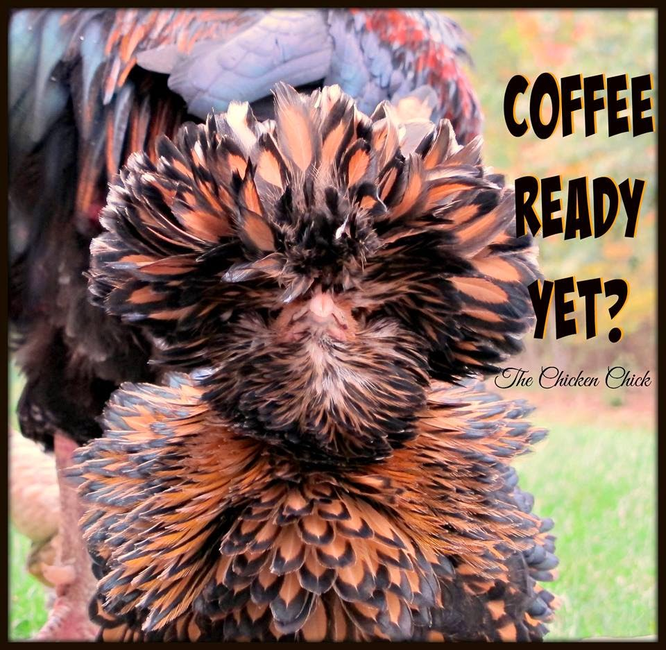 Coffee ready yet?