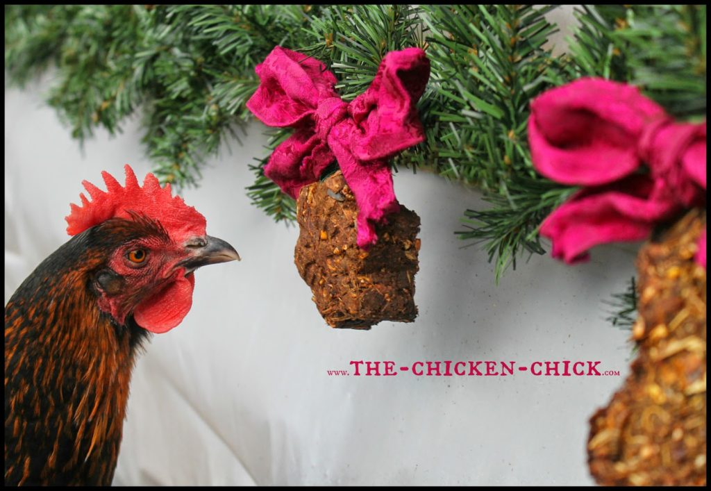 During a molt, chickens lose their feathers and grow new ones, which places great demands on their energy and nutrient stores. Since feathers consist of 85% protein, supplementing chickens' diet with additional protein can help them get through the process. This protein-packed alfalfa cake recipe is a fantastic way to provide molting chickens with a variety of protein sources in one treat while keeping them entertained and active.