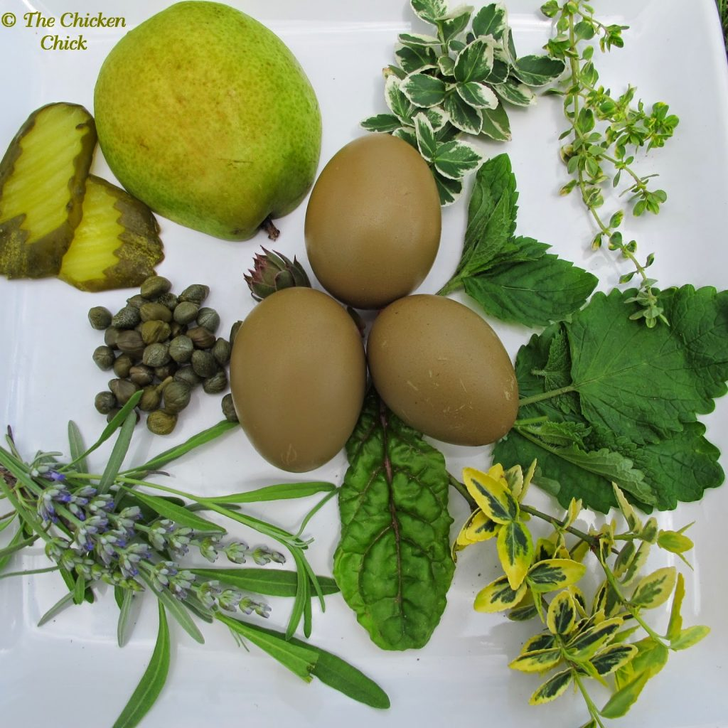 A green egg-laying hen, known as an Easter Egger, or in certain circumstances, an Olive Egger, is a combination of a blue egg-laying breed and a brown egg laying breed. A green egg is blue on the inside with brown pigment on top of the shell, which creates the green hue.