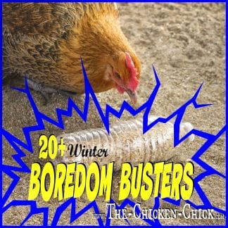 20+ Winter Boredom Busters