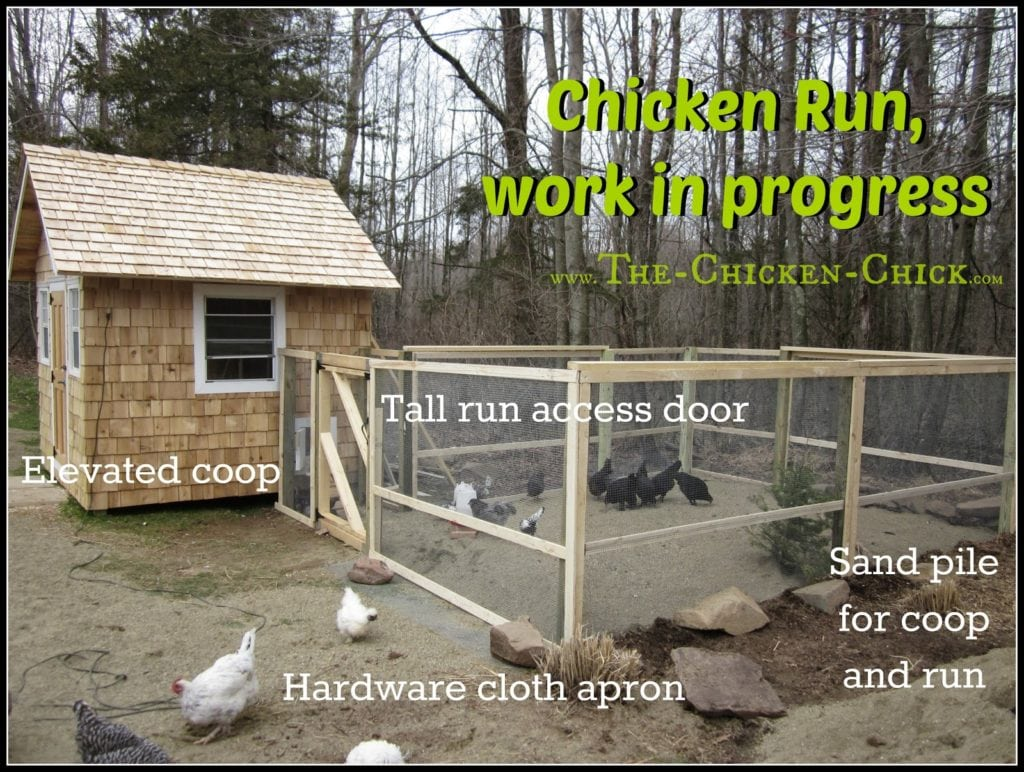 Go Big on the chicken run. Plan a bare minimum space allocation of ten square feet per bird in the chicken run for confined flocks. Free-range flocks will do well with less than 10 sq ft per bird, but plan for inclement weather and build it as large as possible anyway. A spacious run gives chickens the personal space and exercise opportunities that do not exist inside the average coop. Chickens must be provided with elbow room to fend off boredom, obesity and avoid behavioral problems such as feather picking and egg-eating.
