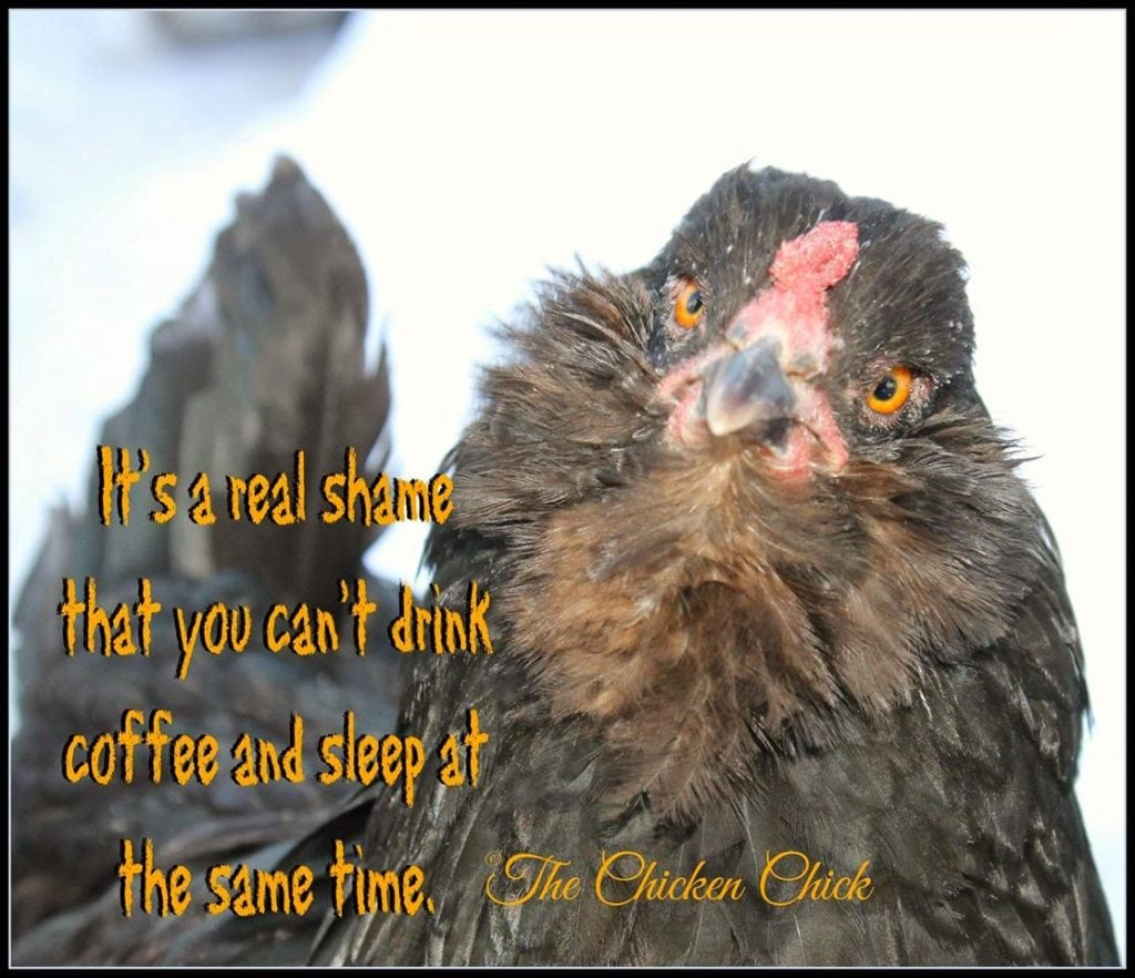 It's a real shame that you can't drink coffee and sleep at the same time.