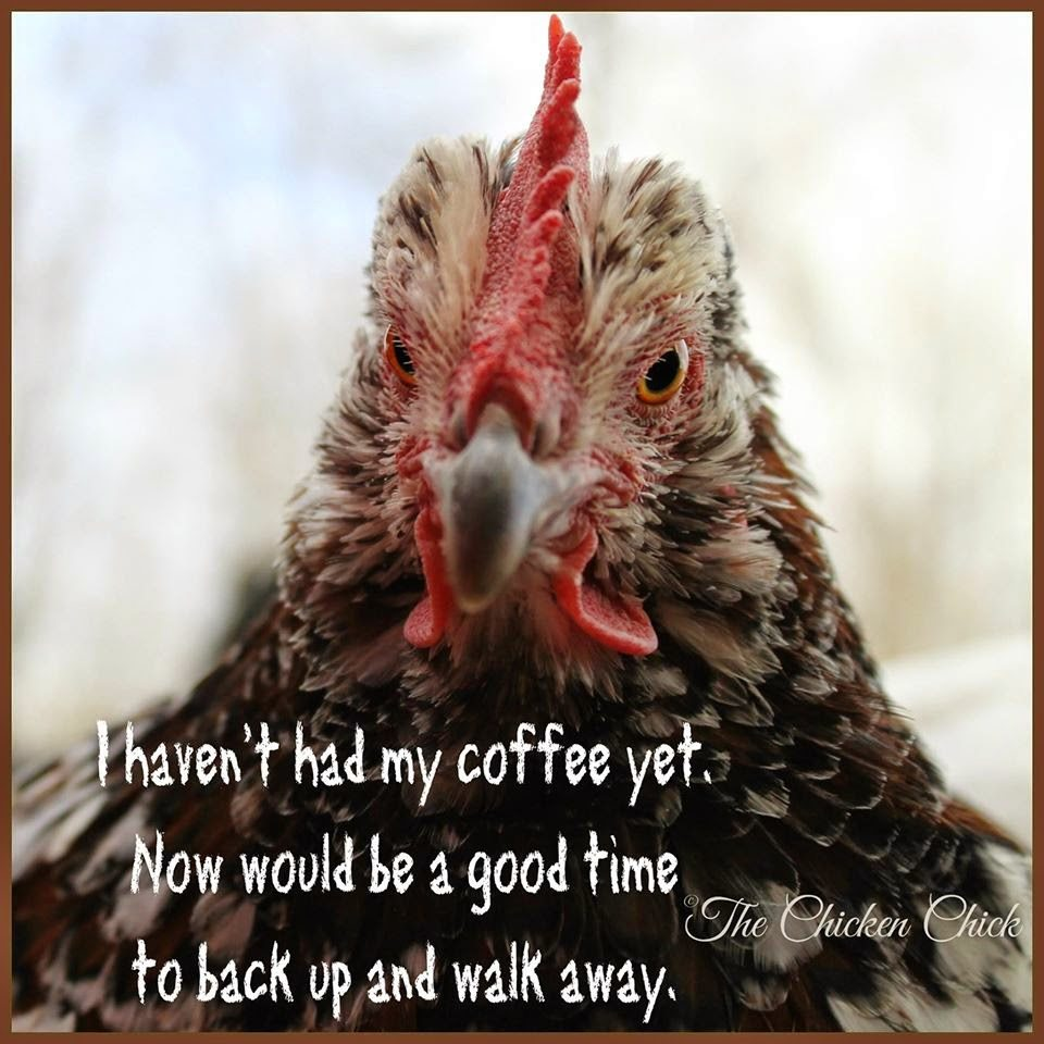 I haven't had my coffee yet. Now would be a good time to back up and walk away.