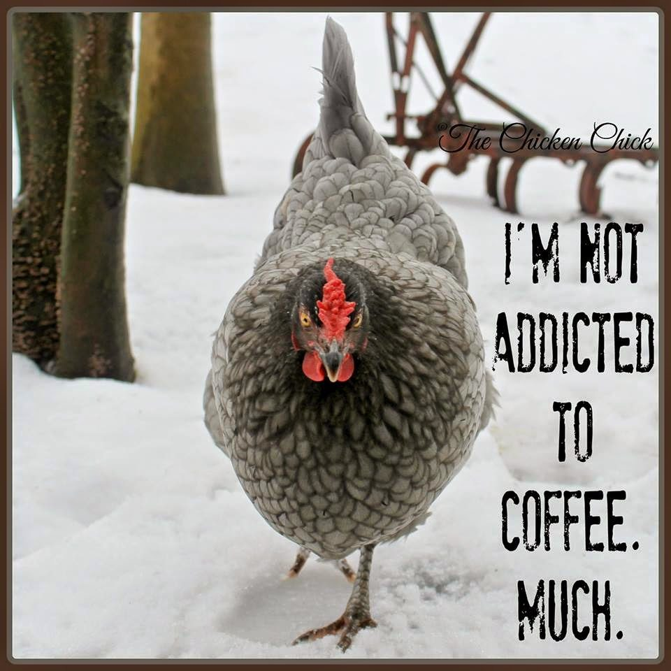 I'm not addicted to coffee. Much.