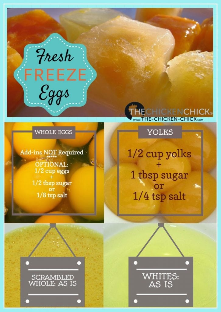 I don't add anything to the fresh eggs when freezing, but because yolks can gel or thicken when frozen, some cooks add salt or sugar before freezing yolks or whole, scrambled eggs to retard the yolk gelling process.