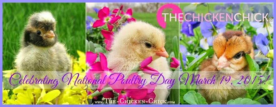 The Chicken Chick celebrates National Poultry Day March 19th with a Giveaway-palooza!