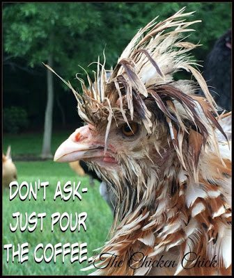 Don't ask, just pour the coffee. via www.The-Chicken-Chick.com