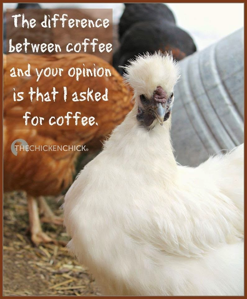 The difference between coffee and your opinion is that I asked for coffee.