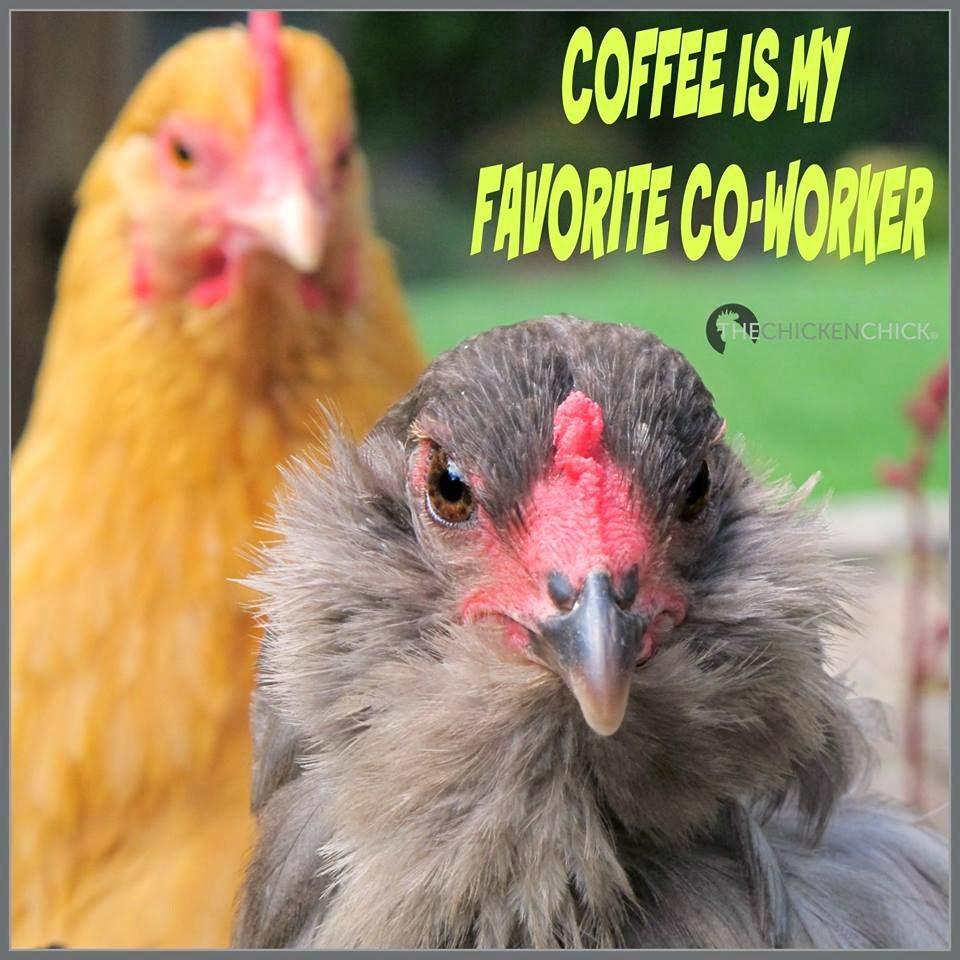 Coffee is my favorite co-worker.