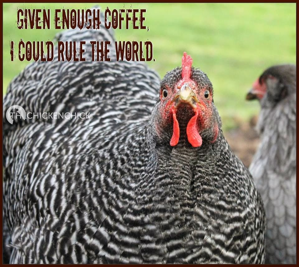 Given enough coffee, I could rule the world.