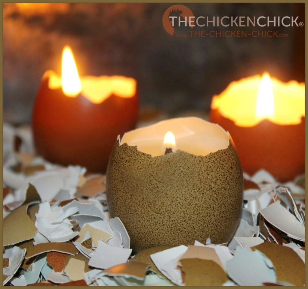 Always use eggshell candles in a stable, non-flammable holder. Ceramic or porcelain egg holders work perfectly for displaying eggshell candles.