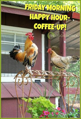 Friday morning happy hour- coffee up!