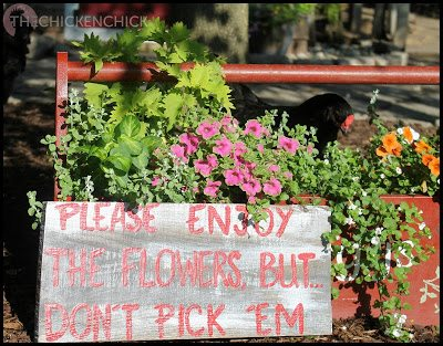 Please enjoy the flowers, but don't pick 'em.