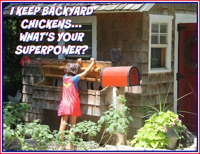 I keep backyard chickens...What's your superpower?