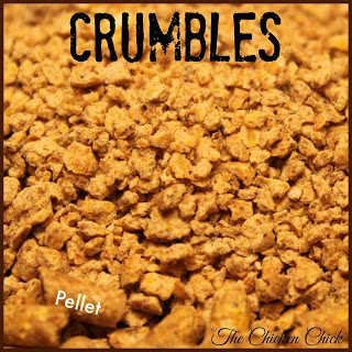 CRUMBLES: chicken feed that is crushed into small pieces.