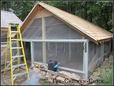 RUN: a fenced, outdoor enclosure attached to a chicken coop. aka: chicken run or pen