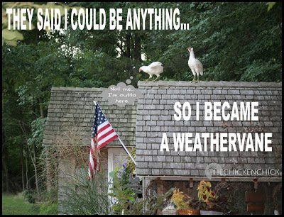 They said I could be anything...so I became a weathervane.