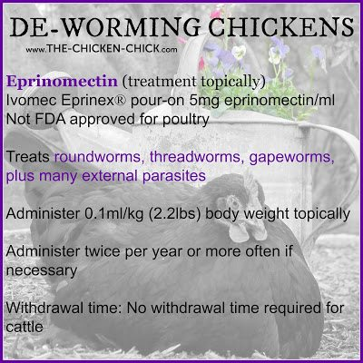 Worms | De-Worming Chickens