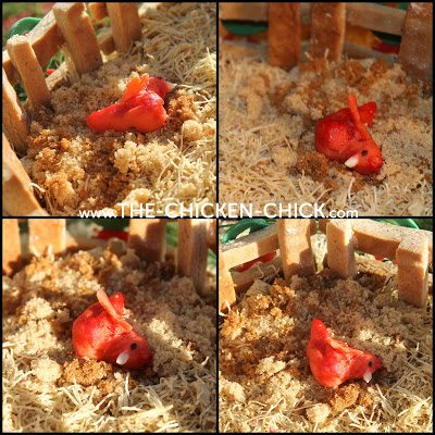 Gingerbread Chicken Coop dust bath area with marzipan chicken