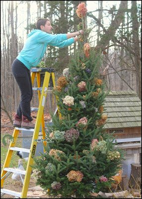 The pencil tree was decorated with dried hydrangeas in a variety of colors and a jute garland.