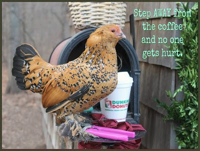 Step away from the coffee and no one gets hurt.