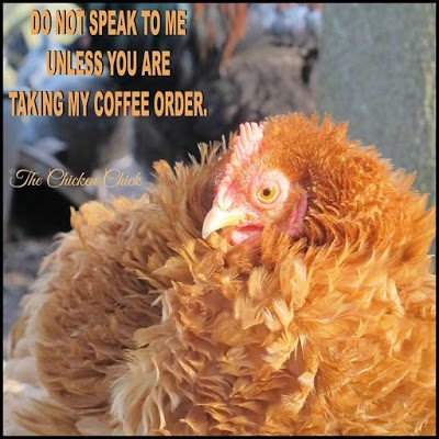 Do not speak to me unless you are taking my coffee order.