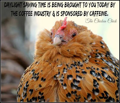 Daylight saving time is being brought to you today by the coffee industry & is sponsored by caffeine.