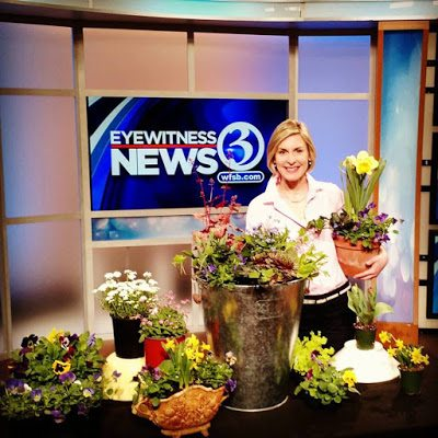 Better Connecticut with Julie Harrison, The Garden Fairy!