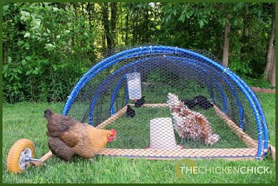 The Playpen Method of flock integration.