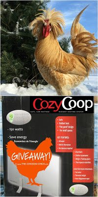 Cozy Coop Flat Panel Radiant Heater GIVEAWAY at www.The-Chicken-Chick.com