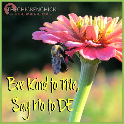 """Avoid dusting flowers and other areas where bees and beneficial insects may land, as diatomaceous earth has the potential to negatively impact most insects that come in contact with it."""" DE is not approved for use as an insecticide on chickens in the US, but even if it were, there are other much more effective, natural insecticides available that do not endanger health of chickens, humans or beneficial insects."""