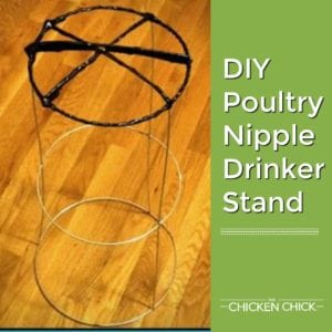 DIY Poultry Nipple Drinker Stand
