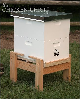 Bee hive on stand all set up and ready for occupants!