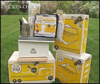 It was May by the time I unboxed the hive components and equipment, and I soon learned that spring is not the right time of year to source bees.