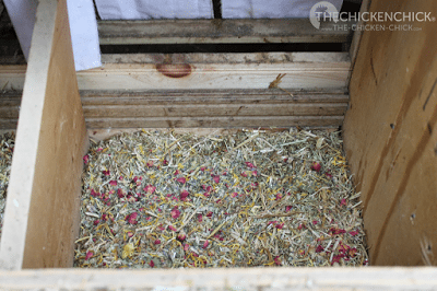 Why Nesting Material Matters | Spruce the Coop Herbal Fusion mixed into the nesting material