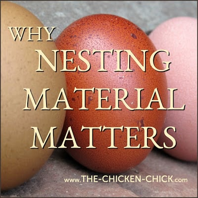 Why Nesting Material Matters | Most of us never think about the purpose of nest box material for our backyard chickens, but the topic deserves some consideration because most of us are getting it wrong.