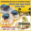 Brinsea-e1526562689331.jpg