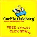 Cackle-Hatchery-e1526562519340.jpg