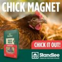Chick-Magnet-600x600-e1526562335370.jpg