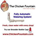 Chicken-Fountain-e1526562608241.jpg