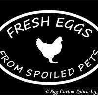 Fresh Eggs from Spoiled Pets