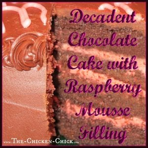 Chocolate Cake with Raspberry Mousse filling
