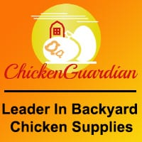 ChickenGuardian112018.jpg