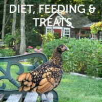 Diet, Feeding & Treats