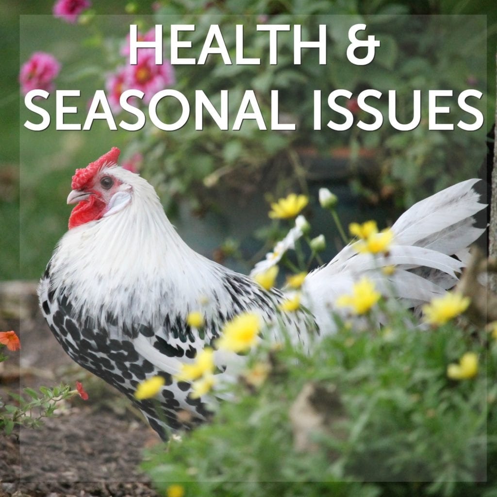 Health & Seasonal Issues