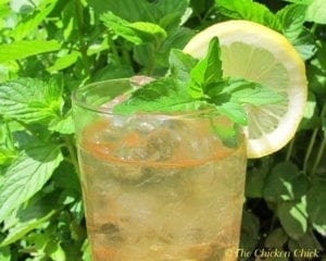 Arizona green tea imposter recipe