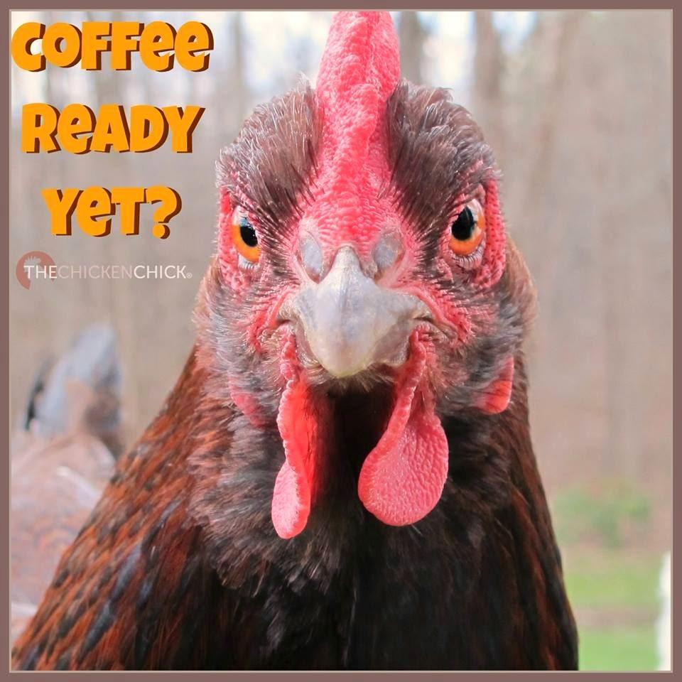 Coffee Ready Yet