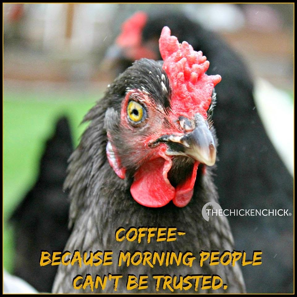 Coffee becuase morning people cant be trusted