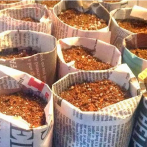 DIY Newspaper Seedling Pots, shared by Katie's Farm