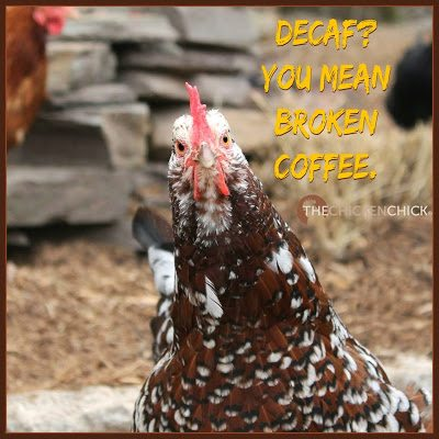 Decaf you mean broken coffee